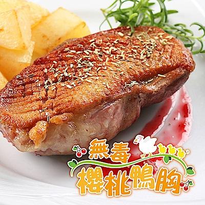 【愛上新鮮】法式特級櫻桃鴨胸8片組(330g±10%/片)