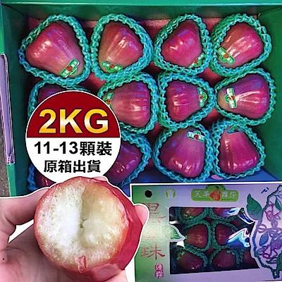 【天天果園】頂級林邊黑珍珠蓮霧禮盒 x2kg (11-13入)