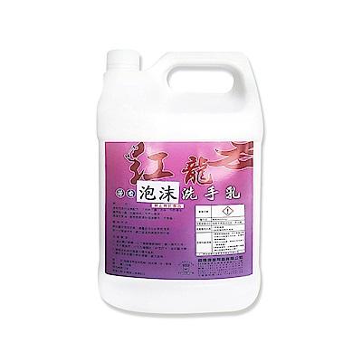 紅龍泡沫洗手露 填充桶1加侖*4/箱