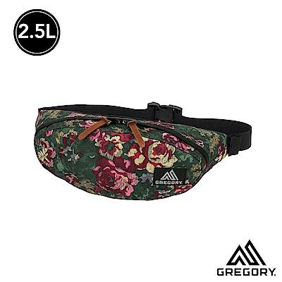 Gregory 2.5L TAILRUNNER腰包 花園油彩