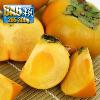 鮮採家 產地特選高山摩天嶺甜柿6顆禮盒(8A,單顆7-8兩)