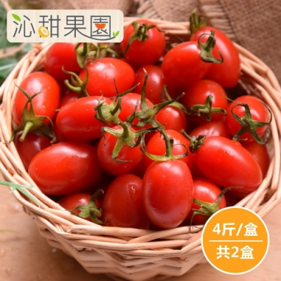 沁甜果園SSN‧玉女小番茄4斤/盒,(共2盒)