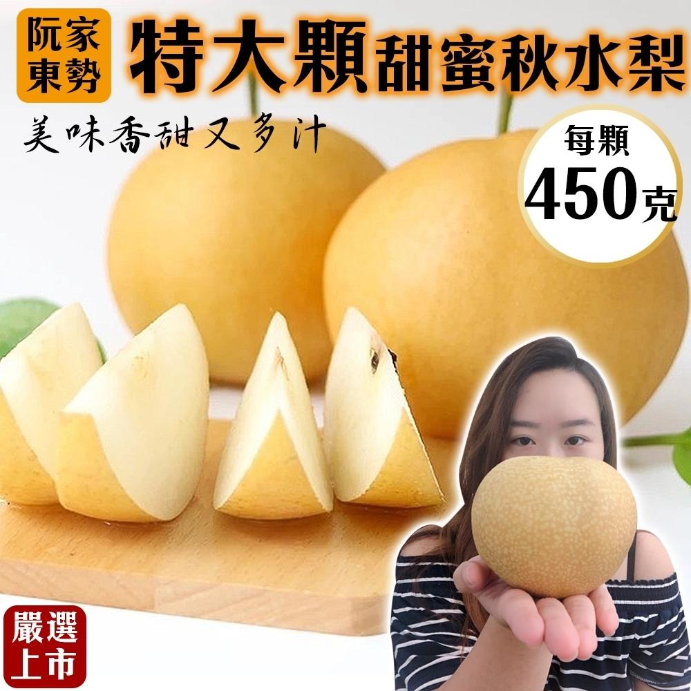 【天天果園】阮家東勢大顆秋水梨5斤(約6-7顆)