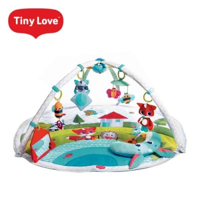 Tiny Love 美國 玩偶健力遊戲墊-Meadow Days