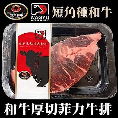 【海陸管家】日本短角和牛-腿菲力牛排1片(每片約200g)