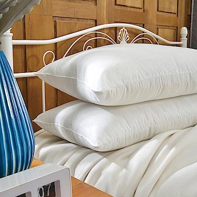 義大利La Belle 日本防蹣抗菌可水洗極致舒柔枕 --二入
