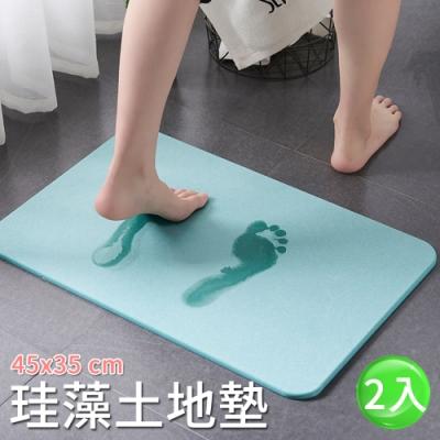 【Lebon life】45x35珪藻土素色地墊/2入(珪藻土地墊 腳踏墊 硅藻土 硅藻泥)