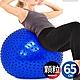 按摩顆粒65CM瑜珈球 (抗力球26吋韻律球帶刺瑜伽球/刺蝟球彈力球健身球/刺球感統球平衡球充氣球大龍球/按摩大球復健球體操球/普拉提球彼拉提斯球) product thumbnail 1