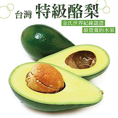 【愛上水果】台灣特級酪梨*1箱(6-10顆/10台斤/箱)