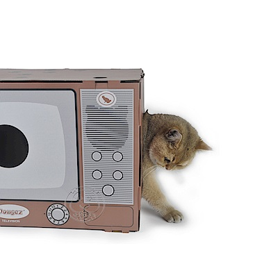 DYY》電視機紙貓屋電視機紙箱43.5X31X31cm
