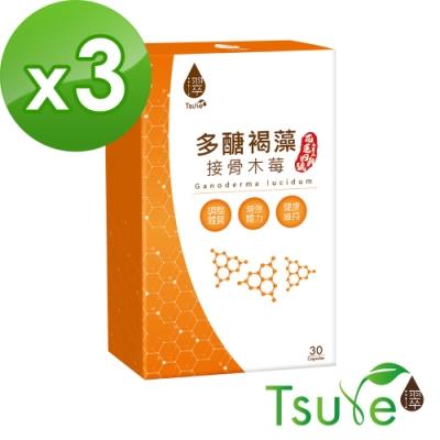(時時樂)日濢 Tsuie-多醣褐藻接骨木莓(30顆/盒)x3盒