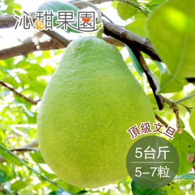 沁甜果園SSN 頂級文旦5-7粒裝/5台斤