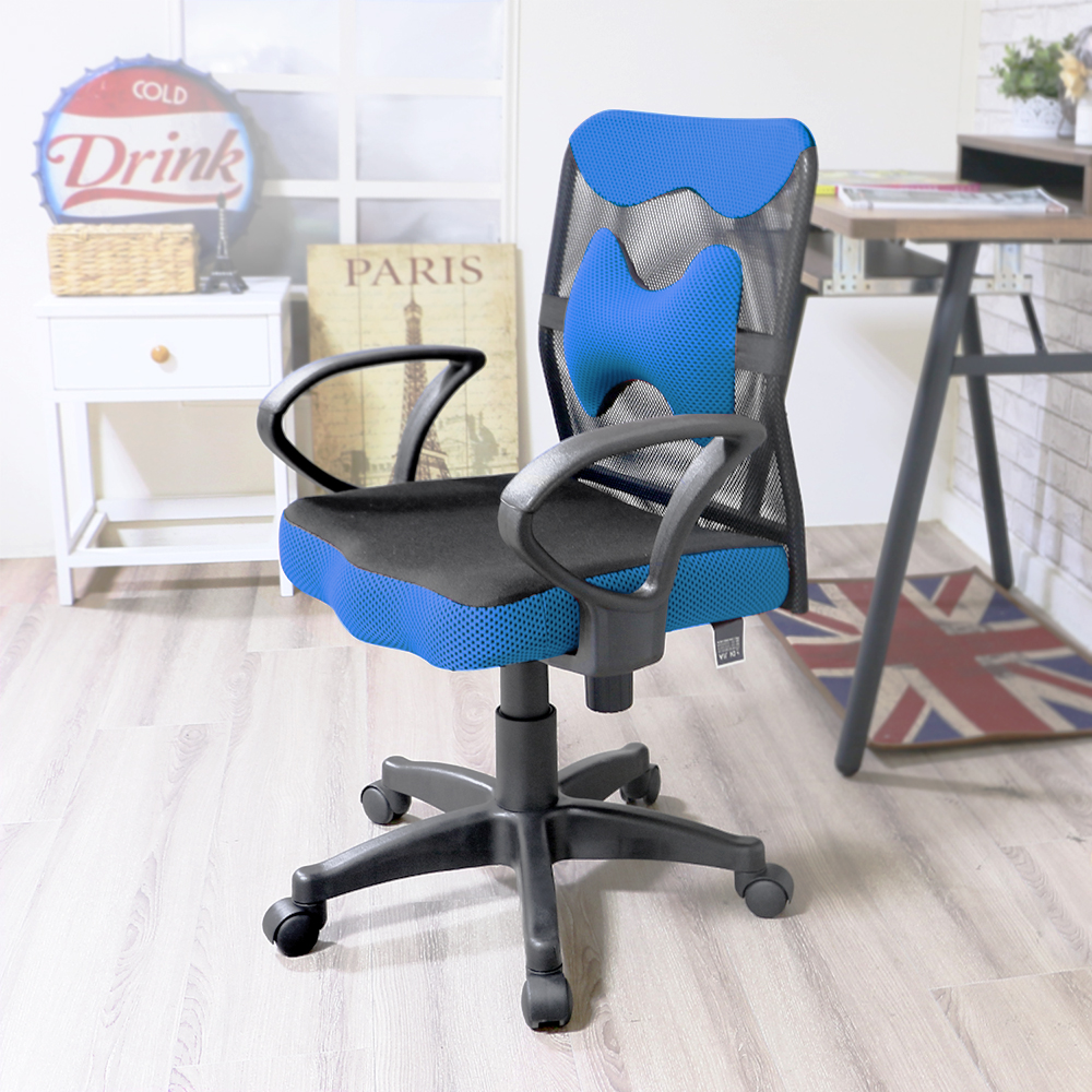 超值2入 椅子夢工廠 艾倫骨頭護腰電腦椅(五色任選)