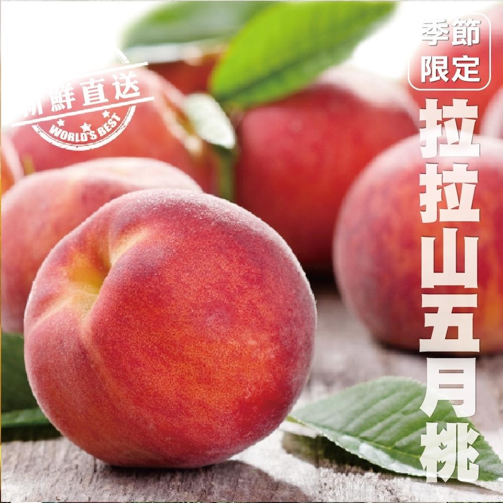 【天天果園】拉拉山五月水蜜桃(媽媽桃)6粒2盒(每盒約2.3斤)