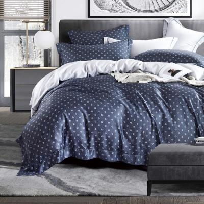 Ania Casa 錄萊 天絲 100% TENCEL 雙人鋪棉兩用被套床包四件組