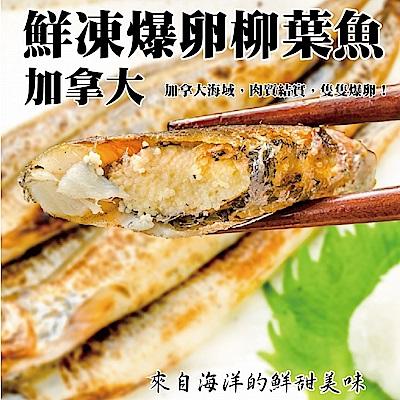 (滿699免運)【海陸管家】加拿大鮮凍爆卵柳葉魚1包(每包9-13尾/約200g)