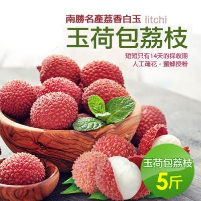 預購-築地一番鮮-南勝名產荔香白玉 玉荷包荔枝(5斤)