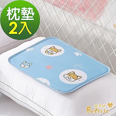 Betrise日本夯熱銷固態低反發抗菌凝膠持久冰涼墊-(枕墊-超值二入組)