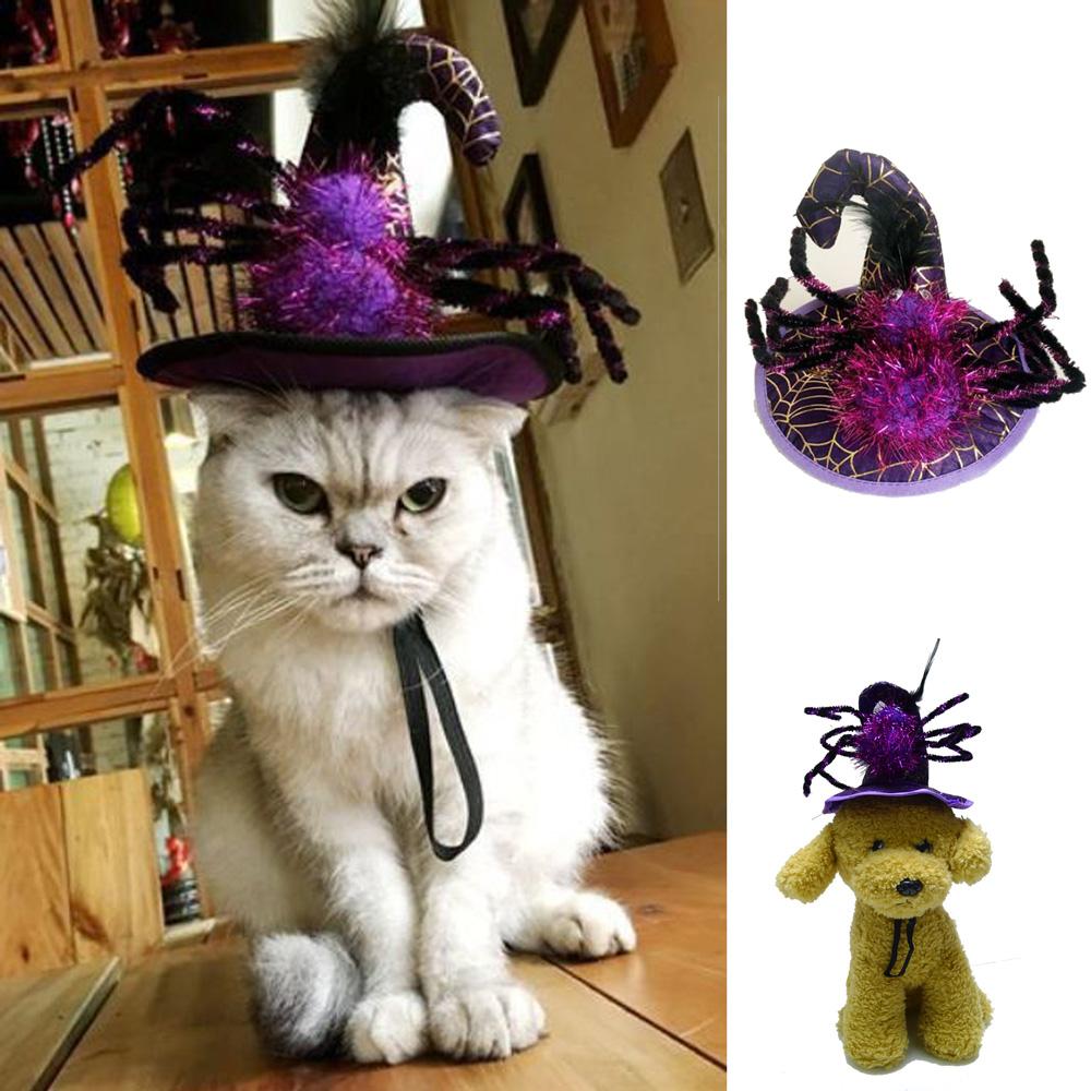 摩達客 寵物萬聖節派對-紫色蜘蛛巫婆帽頭飾