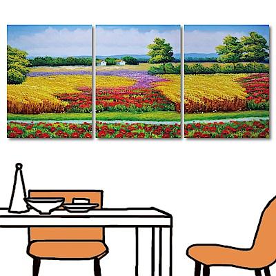 橙品油畫布 三聯式直幅 掛畫無框畫-心田30x40cm