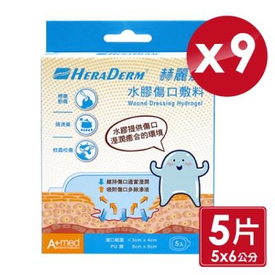 赫麗敷 HERADERM 水膠傷口敷料 5x6cm (5片X9盒)