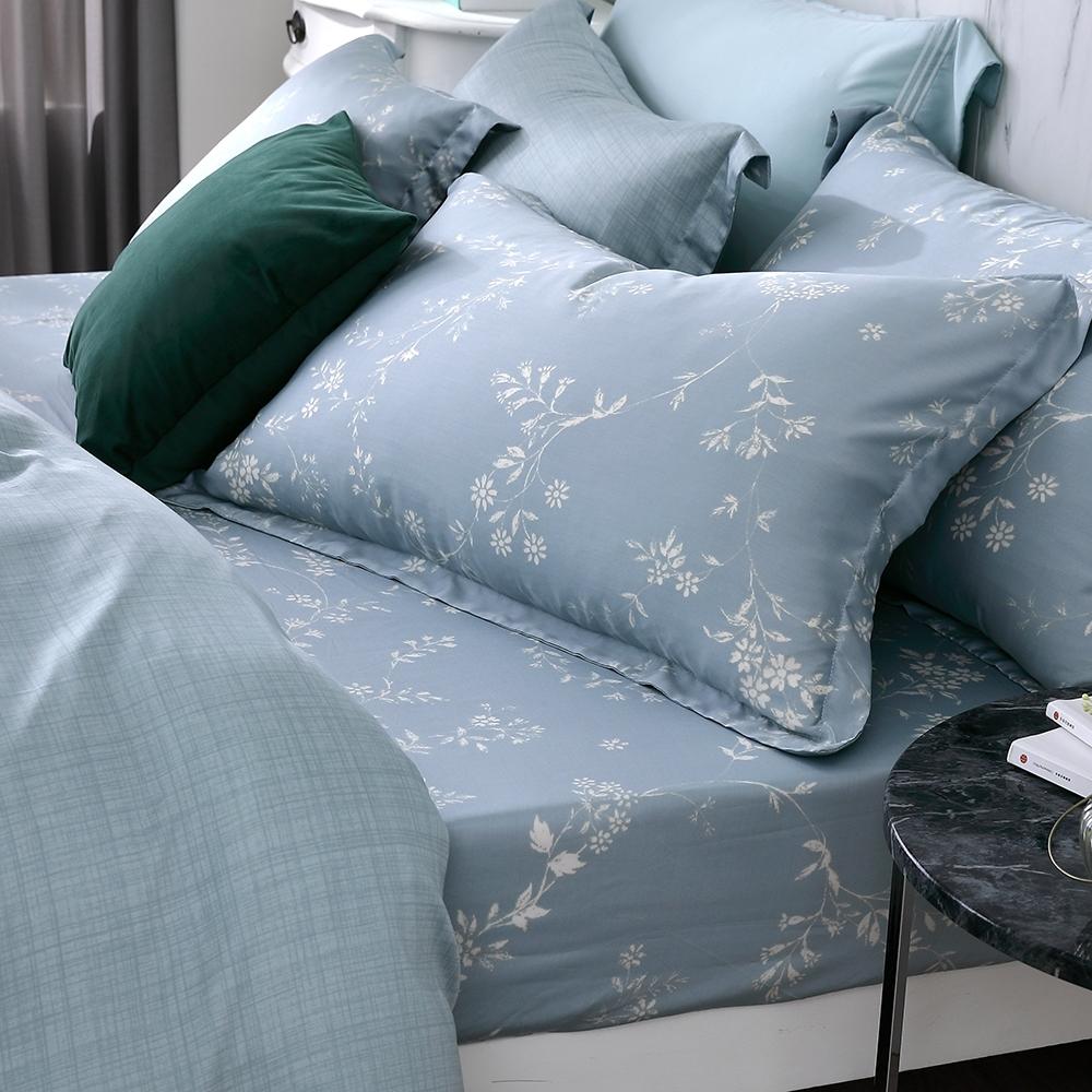 OLIVIA  Dora 標準雙人床包歐式枕套三件組 300織天絲TM萊賽爾 台灣製
