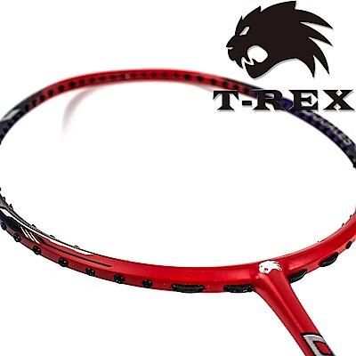 T-REX 雷克斯 - 消光型超高剛性碳纖維羽球拍 YS-DOUALES
