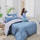 GOODDAY-羽毛-100%純棉-兩用被床包組(加大)