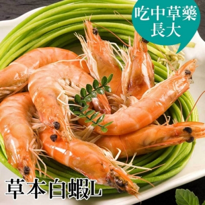 台江漁人港‧草本白蝦(L)(半斤/包,共二包)
