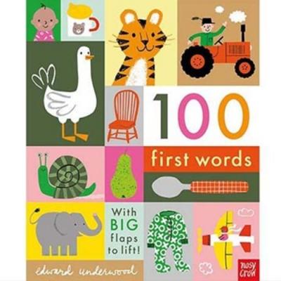 100 First Words 100個基本單字翻翻書