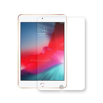 2019 iPad mini/iPad mini 5 專業版疏水疏油9H鋼化玻璃膜