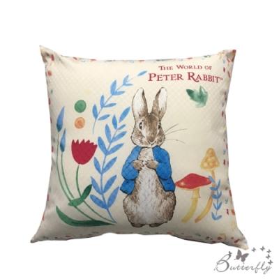 台製MIT-比得兔Peter Rabbit彼得兔經典系列抱枕-新立兔