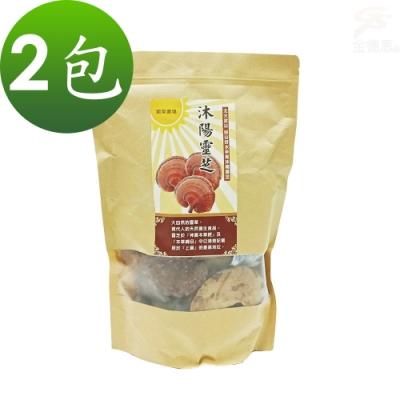 金德恩 台灣製造 2包SGS認證沐陽養生食品松杉破壁靈芝子實體/整朵靈芝1包300g