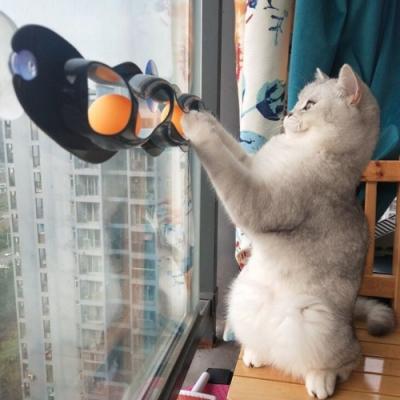 dyy》新款貓咪乒乓球軌道吸盤玩具55*8cm