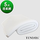 TENDAYS 立體蜂巢透氣網 標準雙人床墊用
