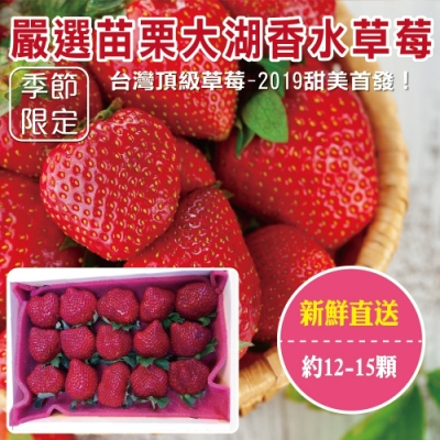 買2送1【天天果園】嚴選苗栗大湖香水草莓12-15顆 共3盒(每盒約400g)