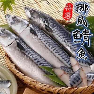 買20送5【海陸管家】特選挪威薄鹽生鯖魚共25片(每片約150g)