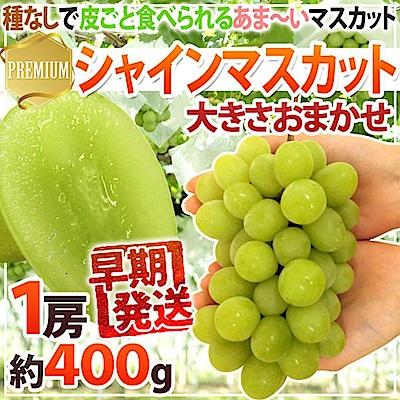 【天天果園】日本長野溫室麝香葡萄(每串400g) x5串禮盒