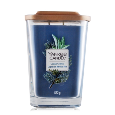 YANKEE CANDLE香氛蠟燭-海岸柏樹 Coastal Cypress 552g-方瓶