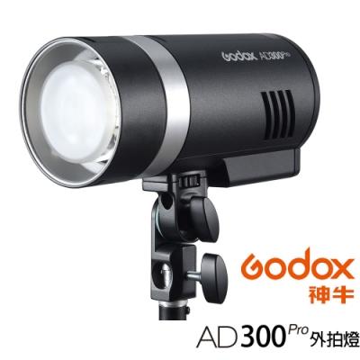 GODOX 神牛 AD300 Pro 300W TTL 鋰電池一體式外拍燈 (公司貨)