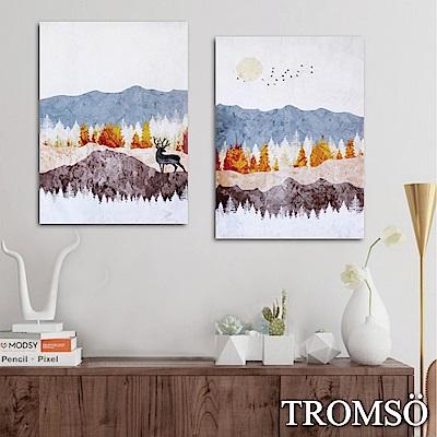 TROMSO時尚無框畫-北歐森林