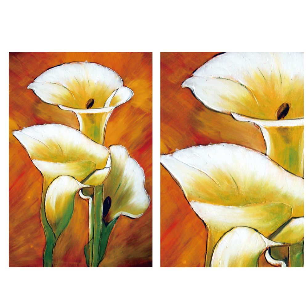 24mama掛畫 二聯 時尚無框畫掛畫-海芋花卉 40x60cm