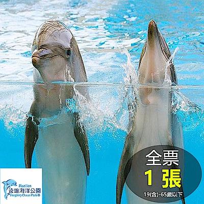 花蓮遠雄海洋公園 全票1張