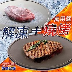 西華SILWA節能冰霸極速解凍+燒烤兩用盤30cm