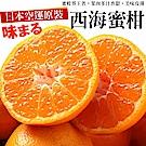 【天天果園】日本西海蜜柑1.2kg原裝盒(12顆入)
