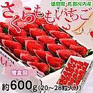 【天天果園】日本德島櫻桃草莓禮盒500g(約16~20入)