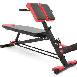 二頭肌板多功能羅馬椅+仰臥起坐板