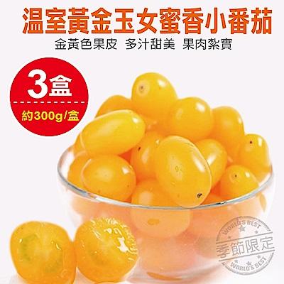 【天天果園】溫室黃金玉女蜜香小番茄(每盒約300g) x3盒