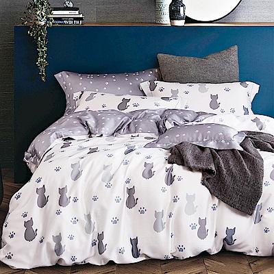 Ania Casa 天絲 TENCEL-加大鋪棉兩用被套床包四件組- 仰星星