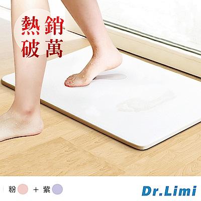 Dr.Limi 超吸水魔力珪藻土地墊超值二入組-大(粉+紫)
